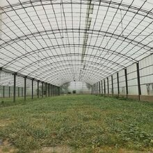 農業溫室大棚采光板透明瓦陽光板河南艾珀耐特圖片