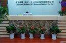 汉南区写字楼绿植租赁图片