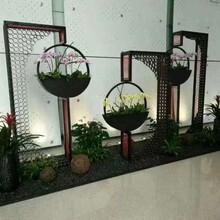 蔡甸区写字楼绿植出租图片