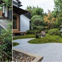 漢南區私人庭院設計公司圖片