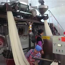 黑龍江全自動米粉機廠家價格圖片