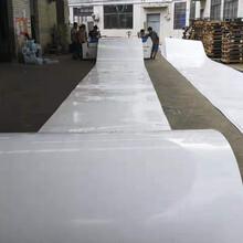 北海PP塑料板加工廠家圖片