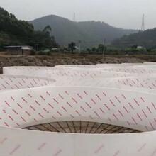 欽州pvc生態養殖箱廠家批發圖片