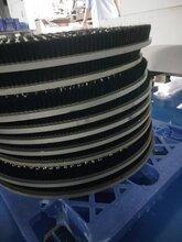廈門塑料毛刷圓盤板生產廠家