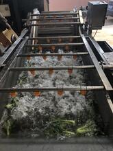 通辽草莓清洗机厂家价格图片