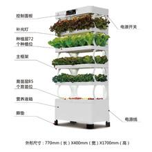重慶麥佳農業科技-五層田智能蔬菜種植機圖片