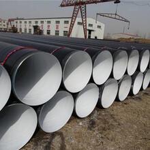 法兰涂塑钢管价格厂家渭南服务周到图片