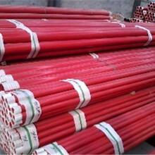 宜宾DN涂塑复合钢管生产厂家电话推荐图片