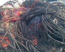浙江废旧电线电缆回收站图片