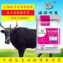 牦牛专用预混料浓缩料提高全面营养天津饲料生产厂家