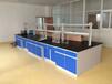 江蘇實驗室廠家供應實驗臺通風柜儀器柜實驗家具實驗室排風系統