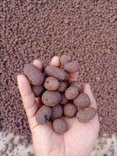 基础建筑材■料,广西陶粒玉林陶粒,量大优惠图片