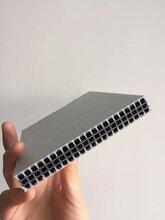 樂山廠家供貨高層房建中空塑料模板圖片