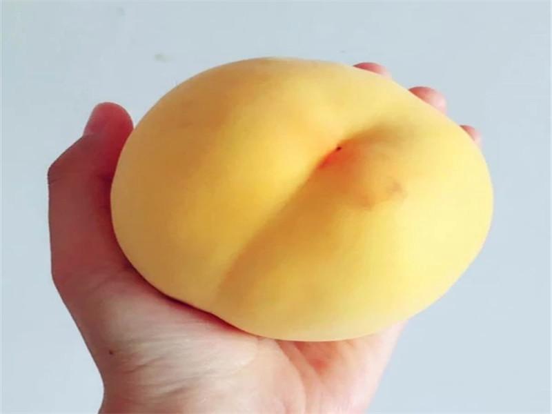 浙江舟山金秋紅蜜桃樹苗采購批發價
