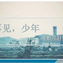 南京人人从众影业有限公司之《再见少年》图片