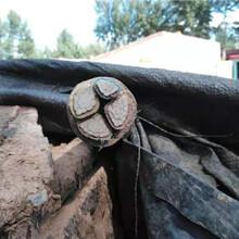 焦作電纜收購-(焦作阻燃電纜回收)電話圖片