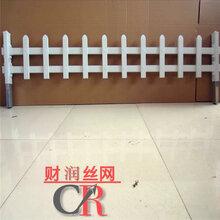 塑钢草坪围栏草坪护栏花池防护栏生产厂家优质价廉图片