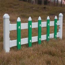 塑钢草坪围栏草坪护栏花池防护栏生产厂家现货供应图片
