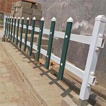 草坪围栏供应草坪防护围栏财润现货草坪围栏生产厂可定做图片
