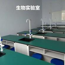 湛江生物实验室课桌价格图片