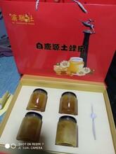 黃岡白鹿原蜂蜜出售圖片