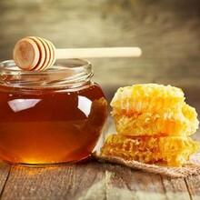 白鹿原蜂蜜直銷圖片