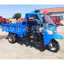 液压自卸电启动柴油三轮车农用爬山虎工程运输车图片