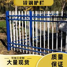 可定做锌钢护栏阳台护栏网小区别墅学校庭院铁艺围墙栅栏图片