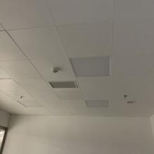 grp真石天花板grp抗菌天花板grp板圖片