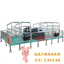 供應江蘇養豬設備母豬繁殖分娩床母豬產保床母豬產床尺寸是多少圖片