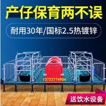 騰焰供應母豬產床養豬設備母豬分娩床尺寸廠家訂做圖片