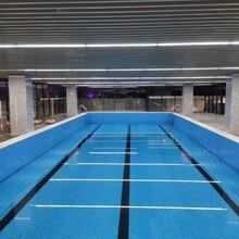 建造泳池優選河南錦鯉拆裝式游泳池