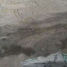 中德新亞混凝土地面裂縫修補劑,昆明混凝土裂縫修補劑源頭廠家圖片