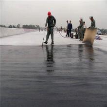 上海防油渗胶泥防油渗水泥砂浆厂家图片