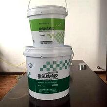 山东改性环氧树脂碳纤维胶生产厂家,环氧碳纤维胶图片