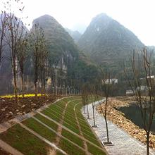 六盘水植生砼护坡增强剂厂家,植被混凝土增强剂图片