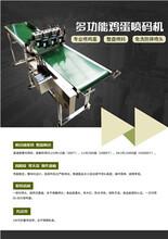 廣州雞蛋噴碼機報價圖片