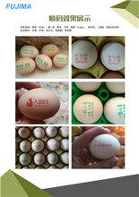 廣東雞蛋噴碼機