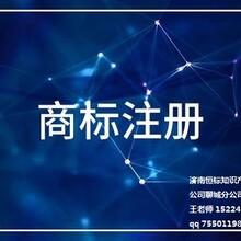濟南市商標注冊流程圖片