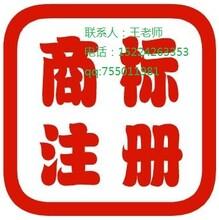 濟南市商標的注冊流程圖片