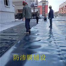 大连HDPE防渗膜氧化塘土工膜多种规格图片