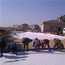 防水毯膨潤土防水毯圖片
