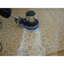 密云地毯清洗服務公司圖片