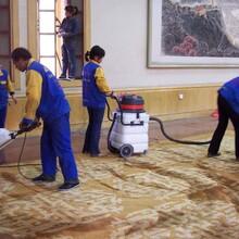 地毯清洗服務公司圖片