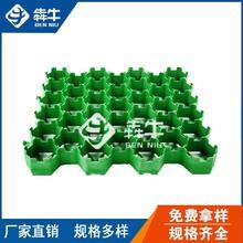 郴州市-小區綠化用HDPE塑料植草格-歡迎訪問圖片