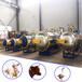 承接动物无害化处理项目屠宰场专用无害化处理设备