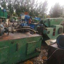 揚州二手金屬鱷魚剪供應商圖片