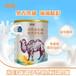伊犁駱駝奶OEM新疆駱駝奶工廠批發價格代工暢哺初乳駱駝奶