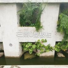 U形生态板桩,包工包料图片