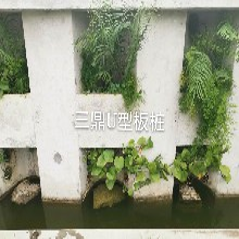 U型生态板桩,包工包料图片